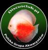 Logo Superdiscus